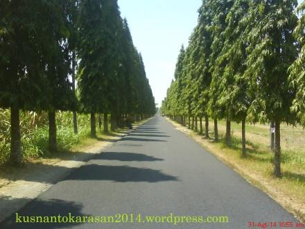 Jalan Joilayan _ Ganjuran