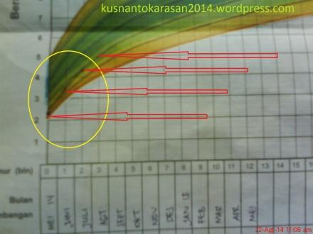 Contoh Gambar grafik KMS
