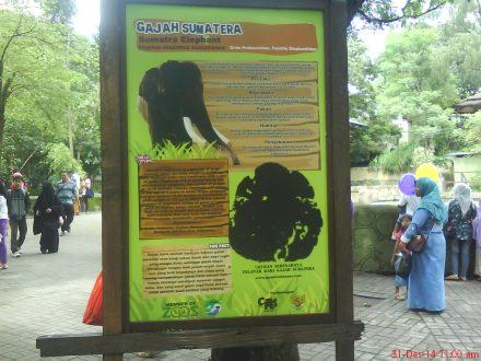 Keterangan tentang satwa di Gembira Loka Zoo