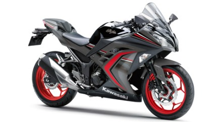 Kawasaki Ninja 250 ABS SE Limited