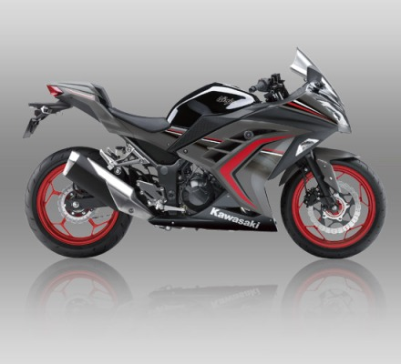 Ninja 250 ABS SE Limited warna Metallic Raw Graystone