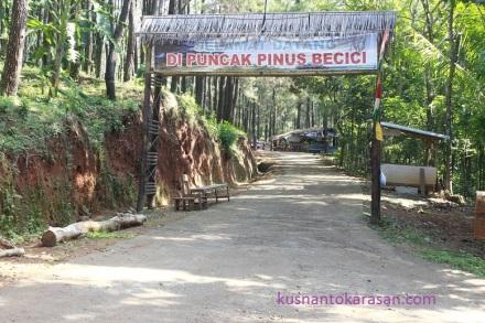 Gapura masuk Puncak Pinus Becici
