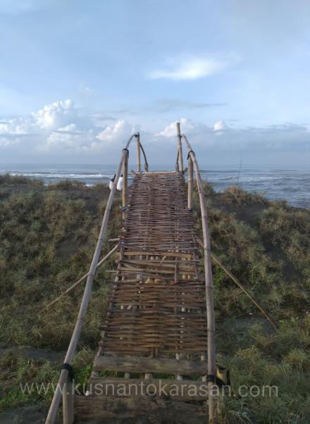 Ini nih yang menarik di pantai Cemara Sewu