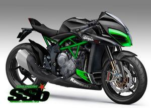 Kawasaki H2F 2018